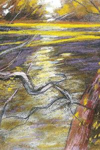La branche pourrie sur la Loire 2001 - Pastel sec C.P 23*32